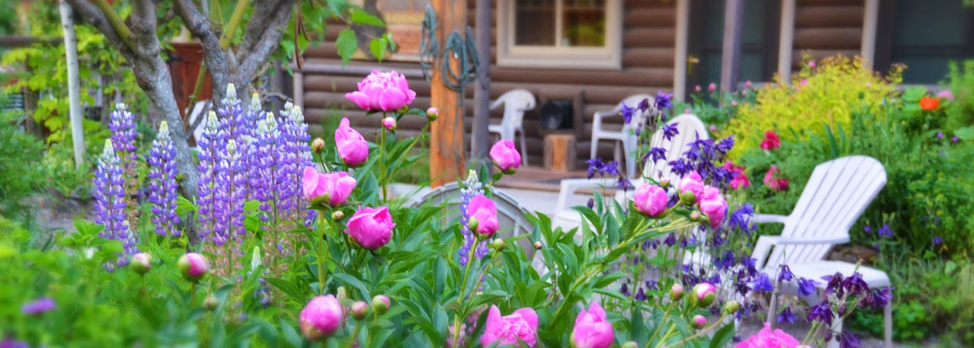 Laughing Horse Lodge flowers